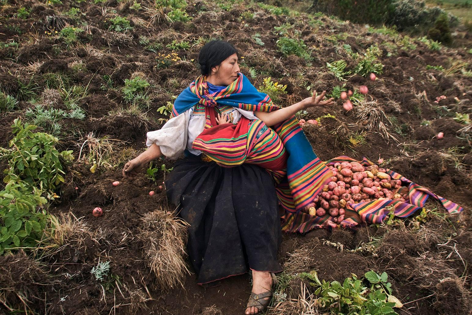 Avez-vous « la patate » ? par S. Cabrejos
